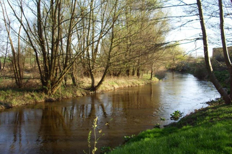 Rzeka Drawa - fot. Synek125