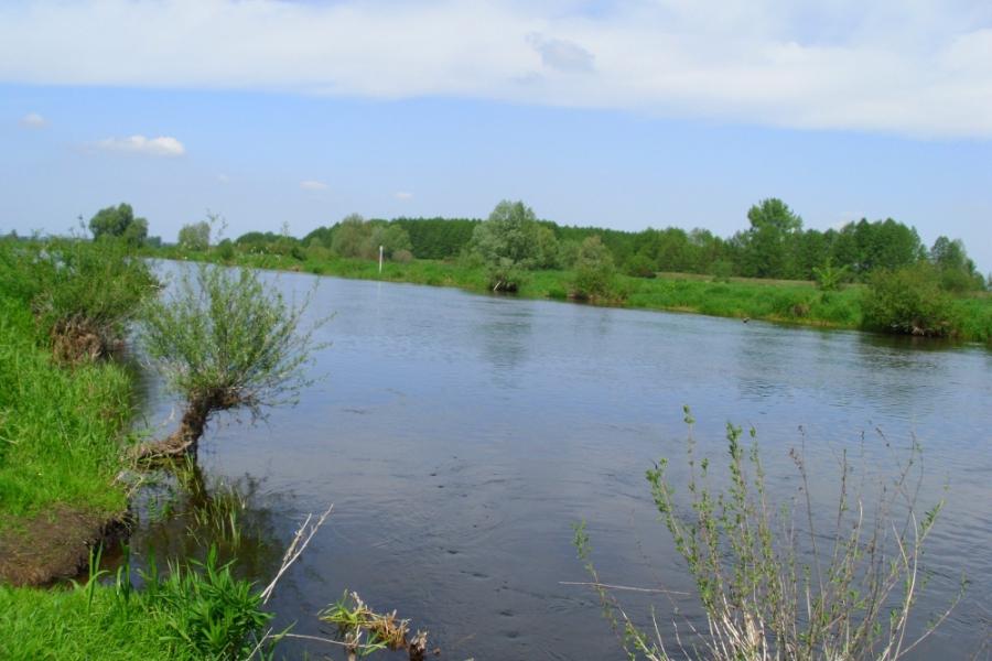 Noteć - spływy kajakowe